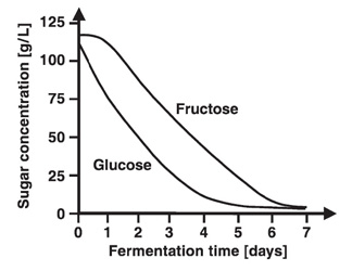 the effect of temperature on the rate of glycolysis in alcoholic fermentation Effect of specific growth rate on fermentative capacity despite the absence of alcoholic fermentation in chemostat cultures grown at dilution rates below d = 028 h −1 , a substantial fermentative capacity became apparent when cells were incubated with excess glucose under anaerobic conditions.